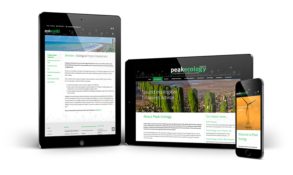 Website Design - Responsive Websites